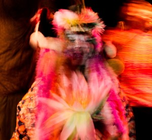 4 GAYA SEVA   Art engagé | Anais Bourquin
